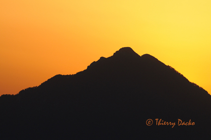 Mont Amaro web